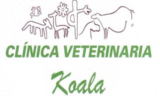 Clinica Veterinaria Koala