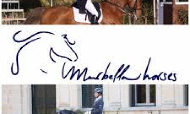 Marbella Horses