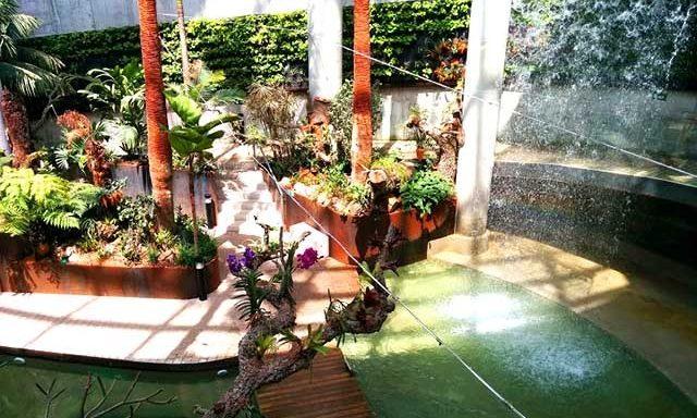 Orchidarium Estepona