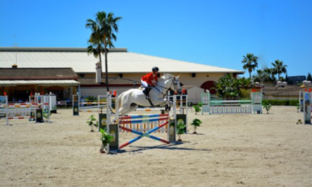 School of Equestrian Art Costa Del Sol