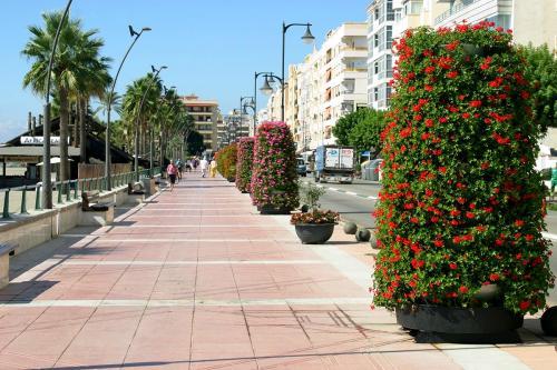 Paseo Estepona